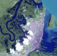 Iquitos Amazone rivier regenwoud jungle