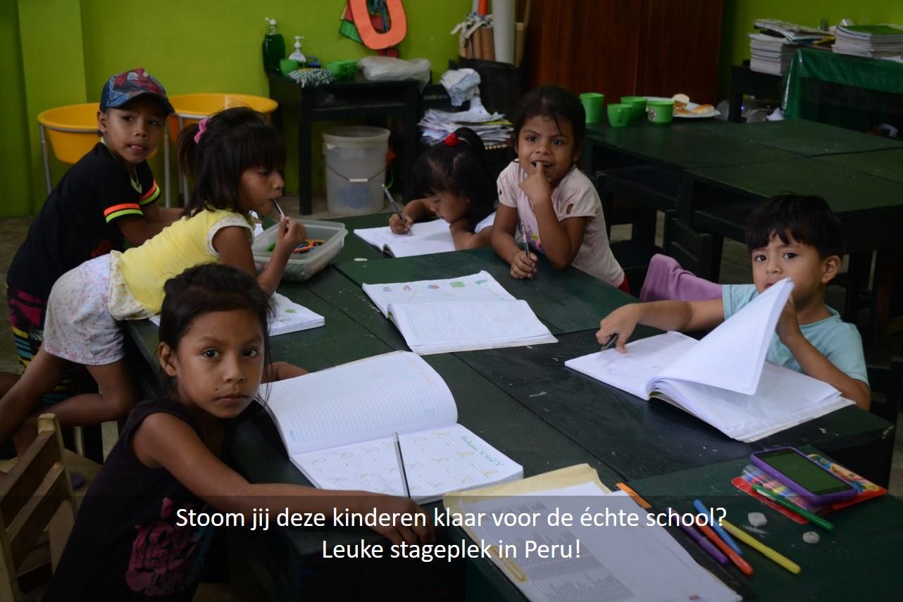 stage of vrijwilligerswerk in Peru